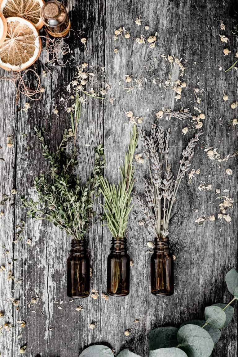 My Go-To Herbs For Rabbits