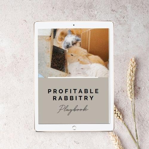 Profitable Rabbitry Playbook product mockup