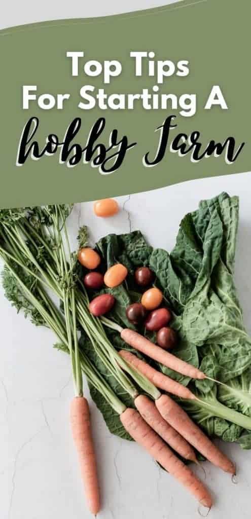 pinterest image for post how to start a hobby farm