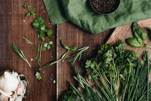 Herbs on the table. Best herbs to grow for beginners