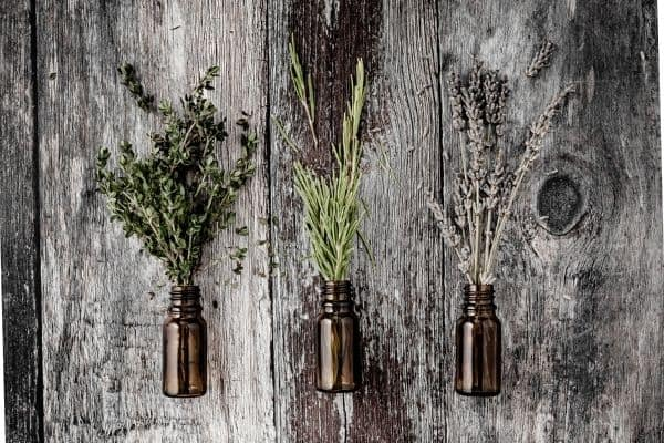 herbs for rabbits in a small glass bottle