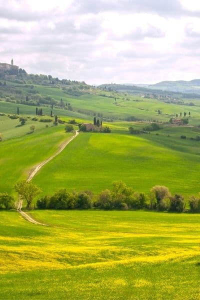 Is Living In The Countryside For You [Ultimate Decision Making Guide]