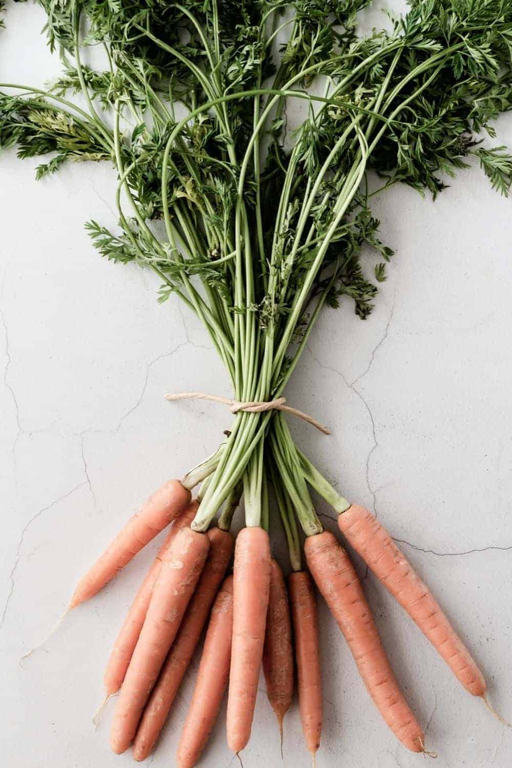 carrots in a bunch, header image for blog post how to start a hobby farm