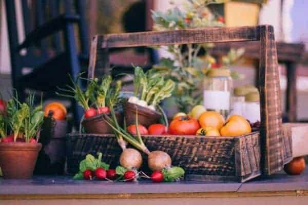 Best Vegetables To Plant In The Fall For A Bigger Harvest