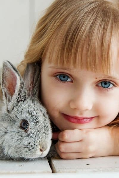 How To Find The Best Rabbit For Kids