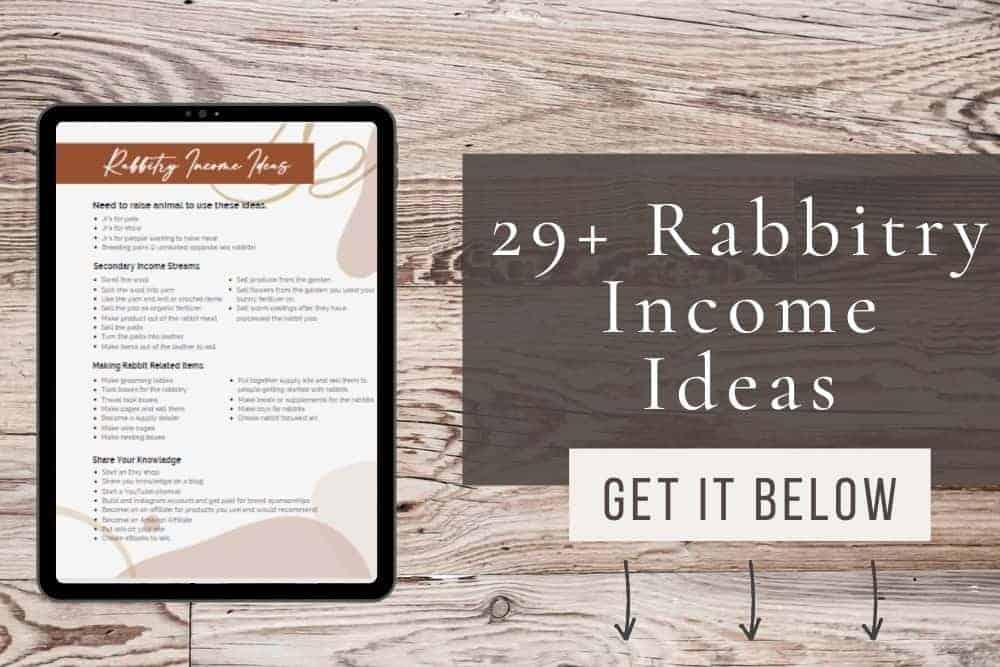 29+ rabbitry income ideas