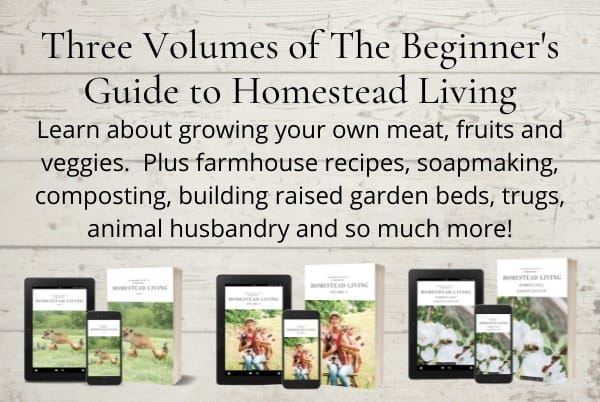 The everyday farmhouse beginners guide to homestead living