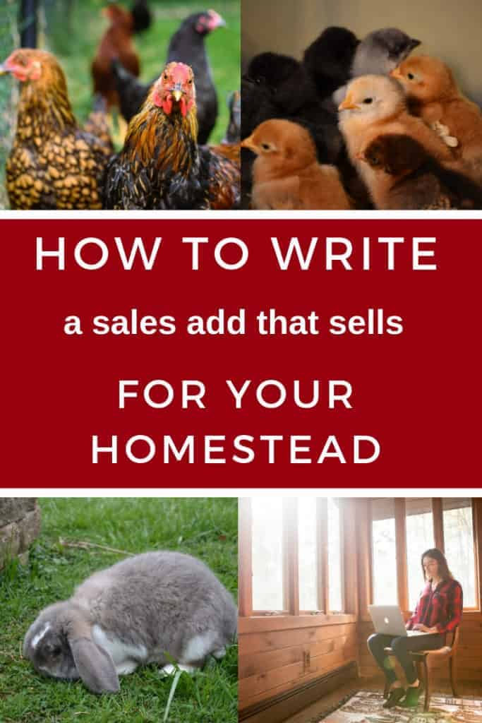 How to sell animals on your homestead with well written sales ads.